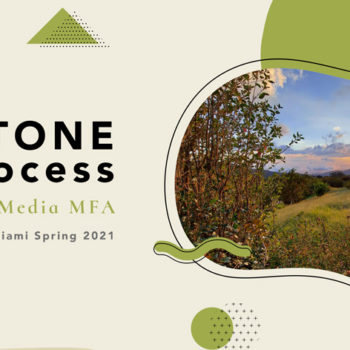 capstone process